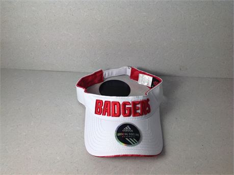 Badgers Visor